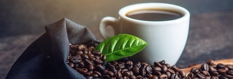 trouver du café bio compatible Nespresso