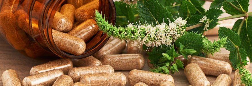 Compléments alimentaires bio